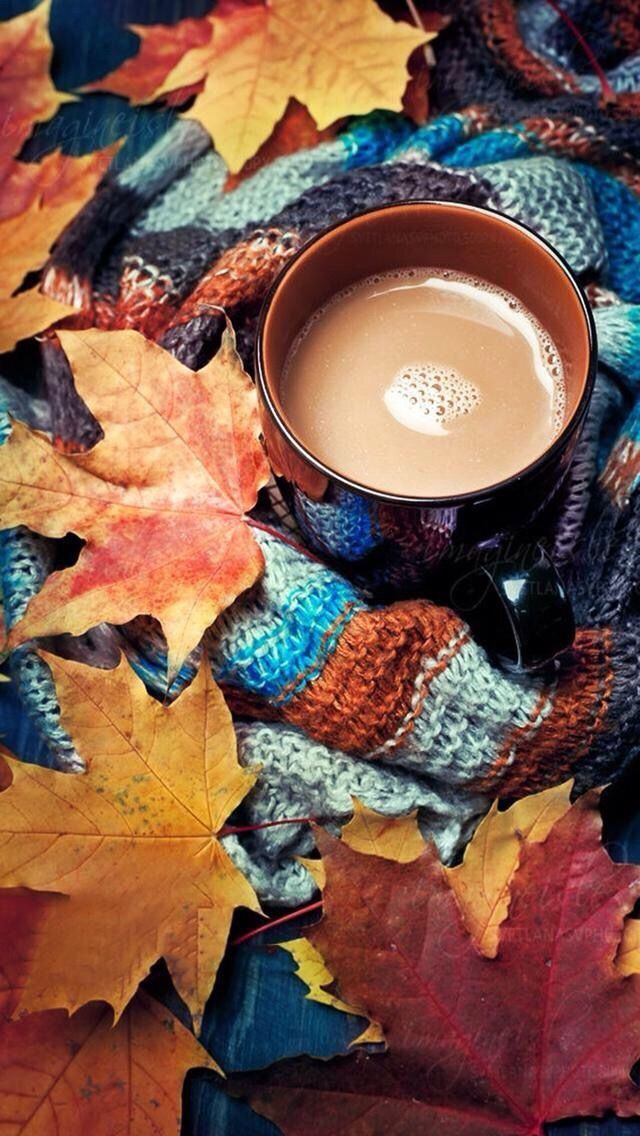 28 Breath Taking and Most Beautiful Fall Wallpaper for Your iPhone 640x1136