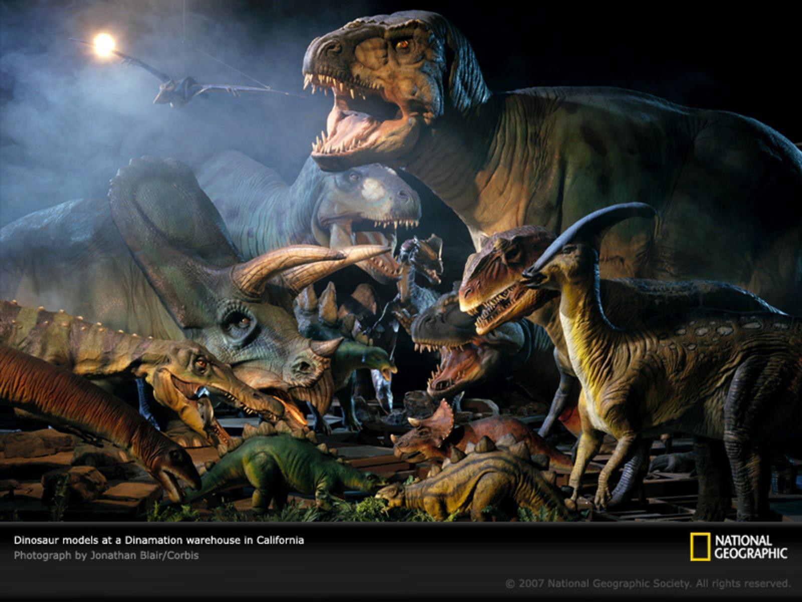 Wallpapers dinosaur wallpapersdinosaur wallpaperdinosaurs wallpaper 1600x1200