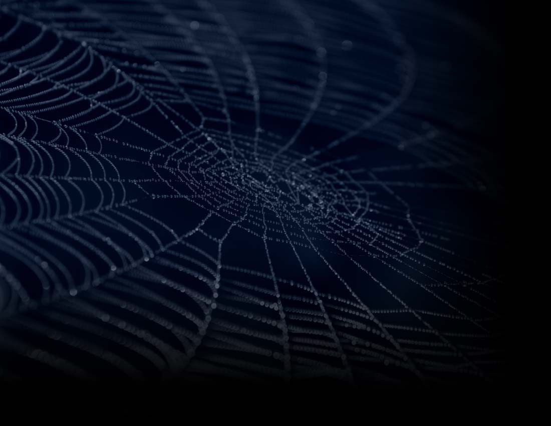 blue spider web background displaying 18 images for blue spider web 1100x850