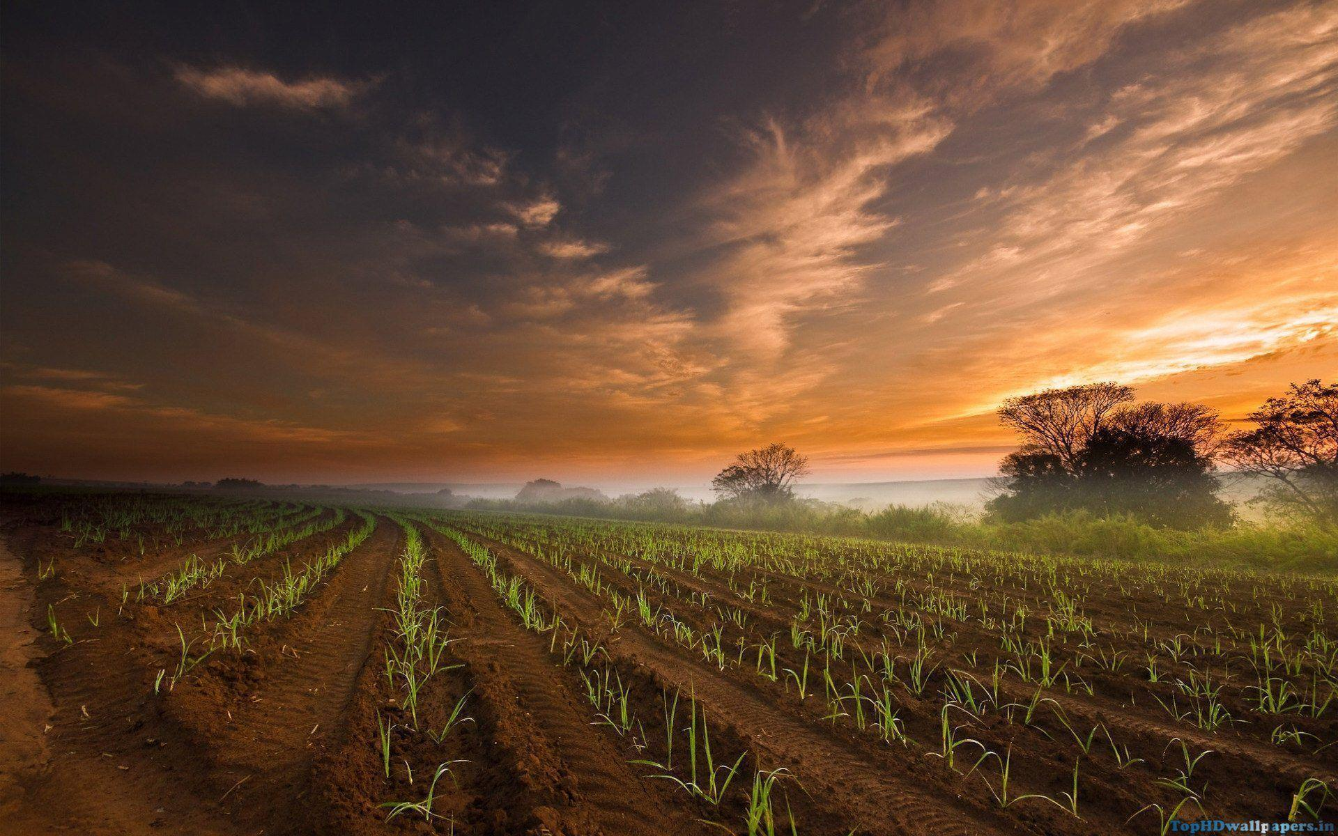 Farm Backgrounds Pictures 1920x1200