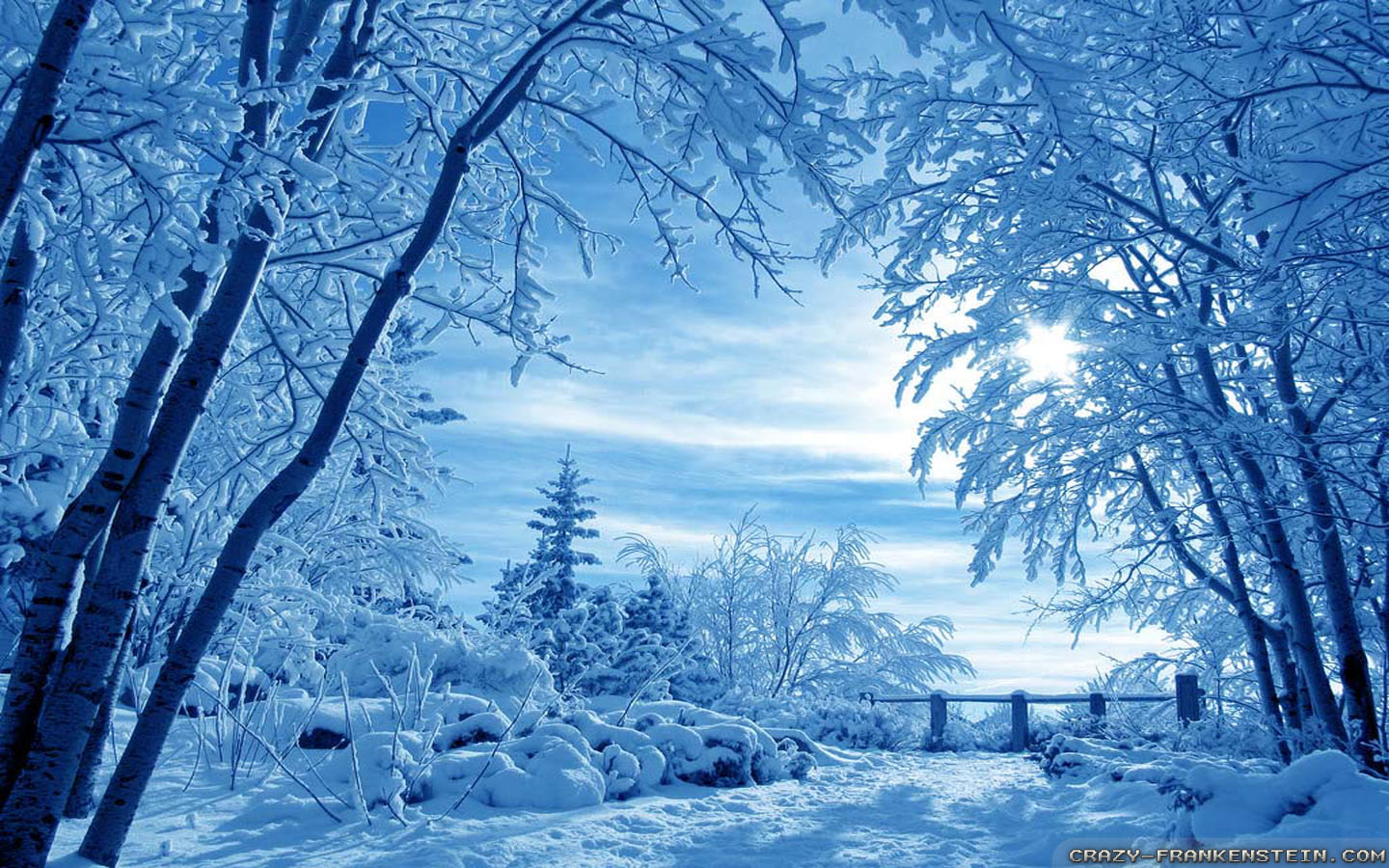 winter screen wallpaper - photo #21