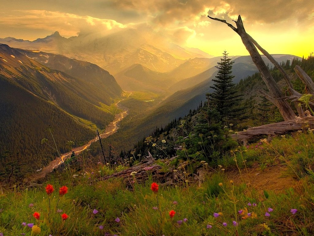 nice nature wallpapers new vista nature wallpapers istartedsomething ...