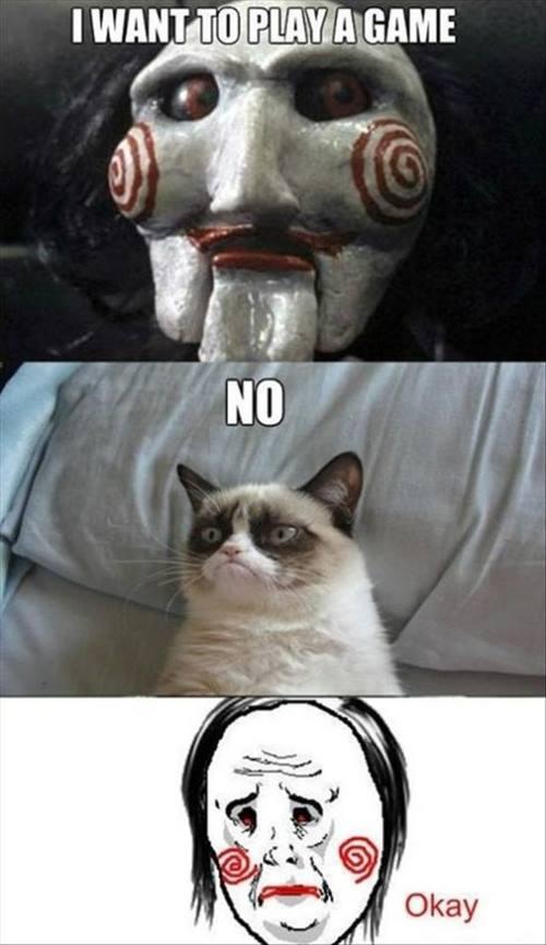 Most Funny Grumpy Cat Photos   Whitec0de Magazine 500x865