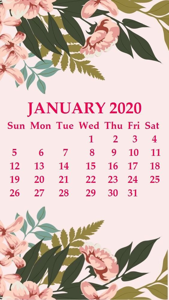 January 2020 iPhone Calendar Wallpaper in 2019 January calendar 564x1001