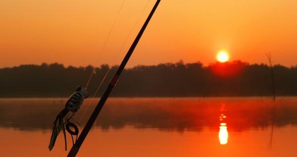 sunrise nature fishing lakes Fish Wallpaper Desktop Wallpaper 600x317