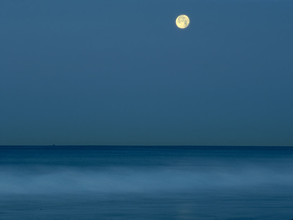 Desktop backgrounds Animal Life Nature Full moon over calm ocean 1024x768