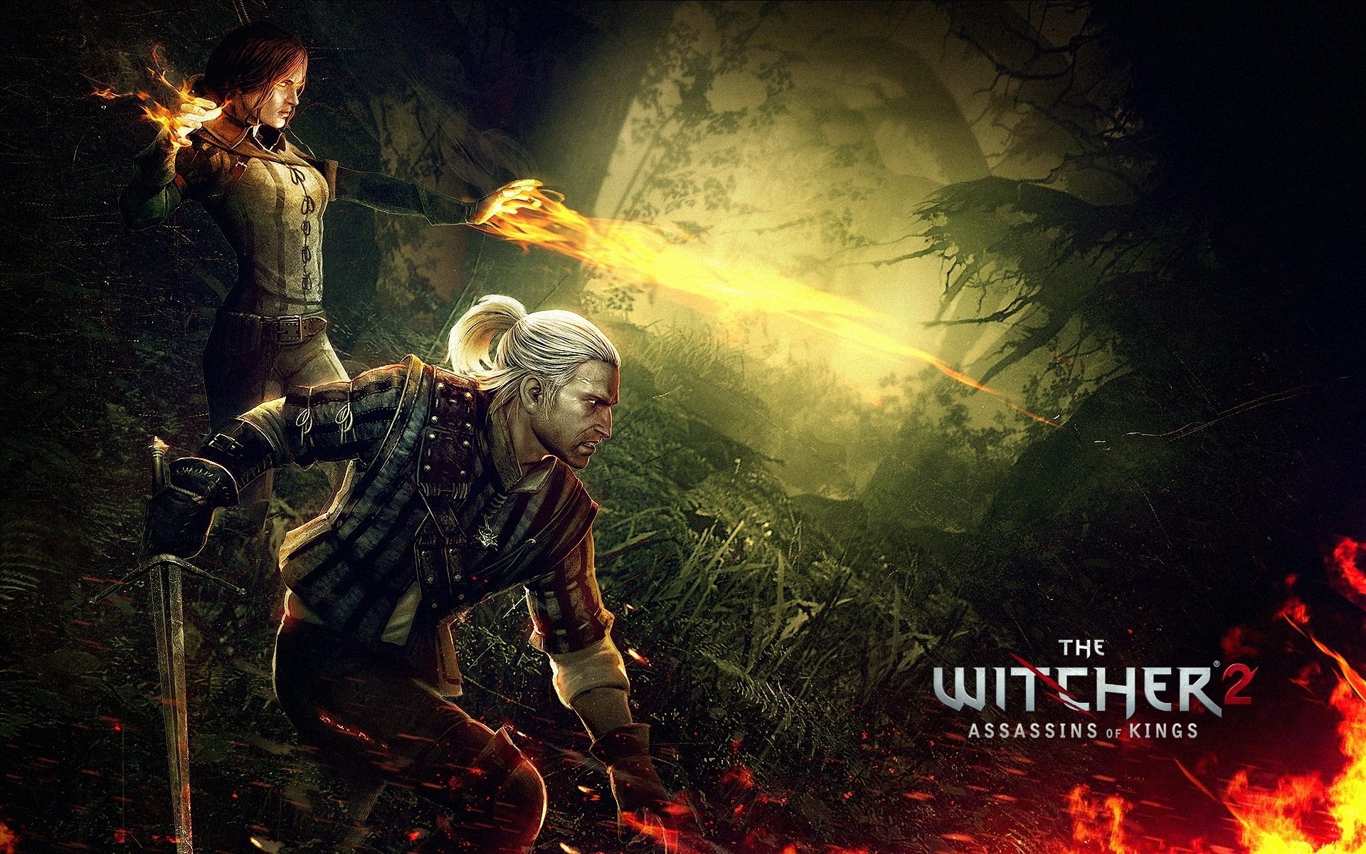 The Witcher 2 Assassins Of Kings HD Wallpaper Background Image 1920x1200