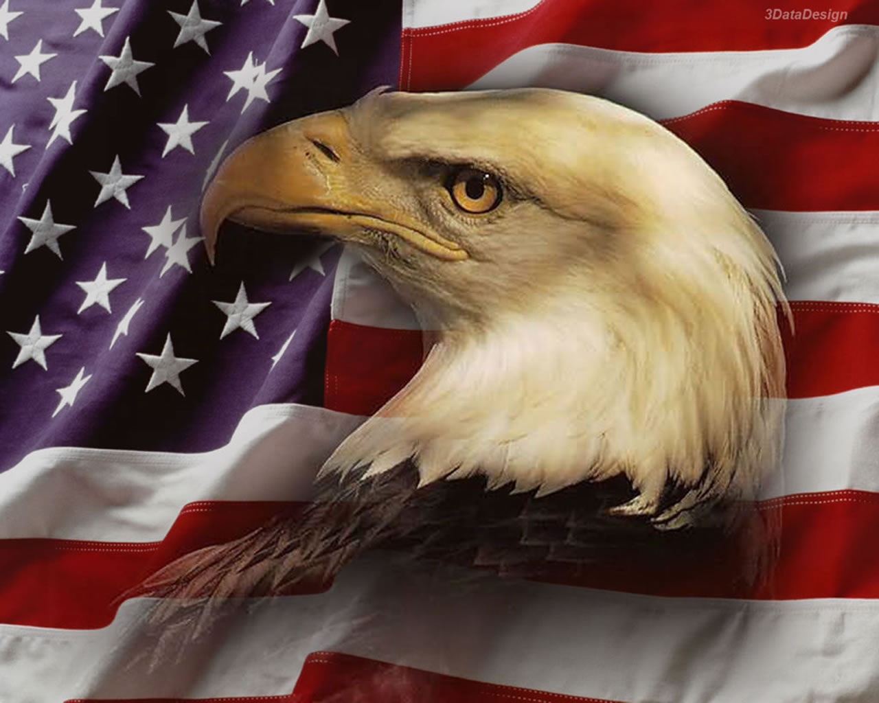 American Flag Background with Eagle wallpaper wallpaper hd 1280x1024