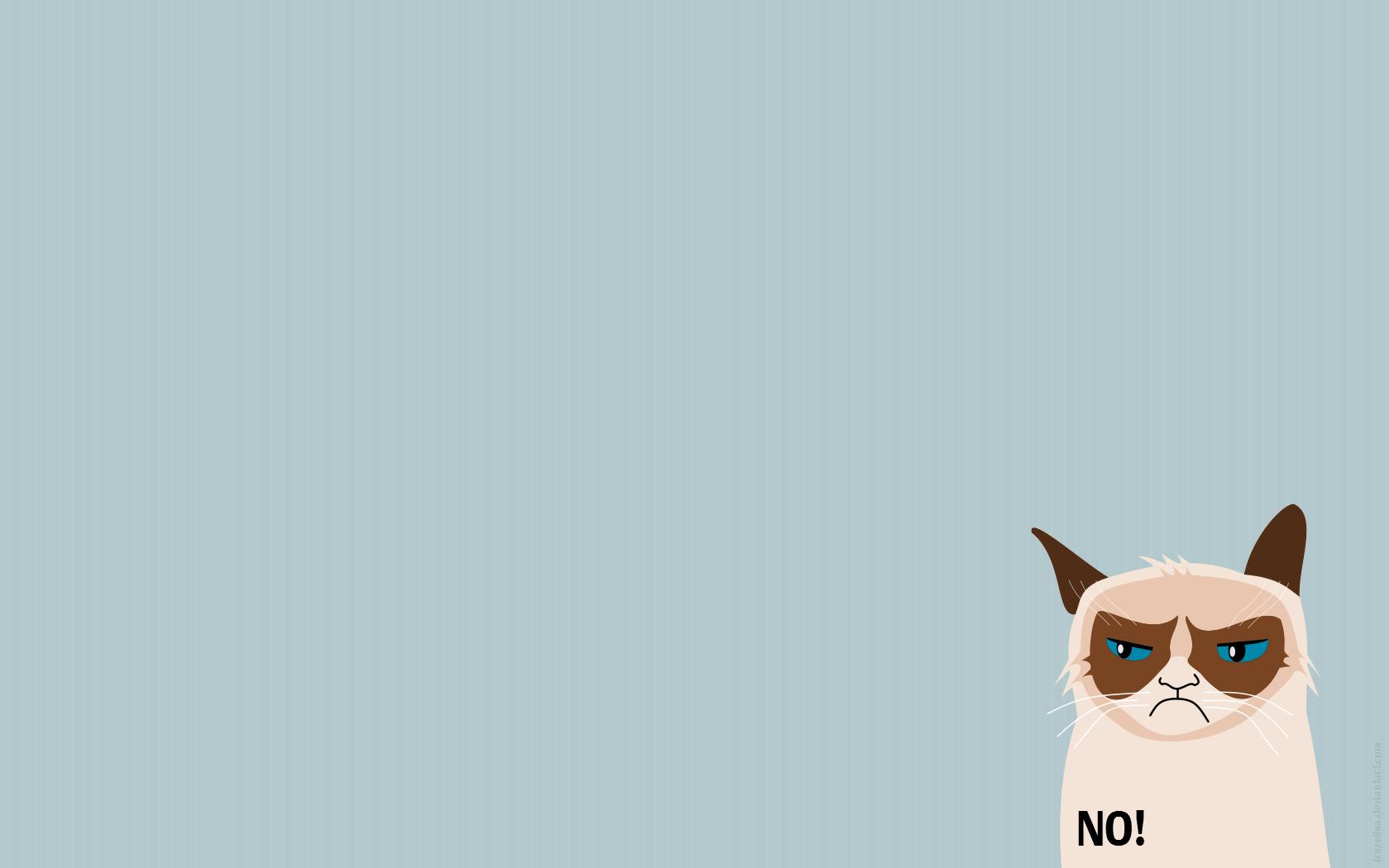Grumpy Cat Wallpaper   HVGJ 1680x1050
