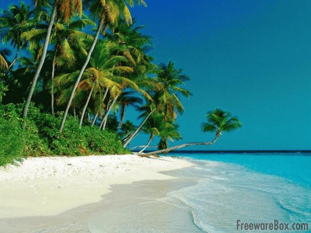 Free Beach Screensaver freeware screenshot - Screensavers - Nature ...
