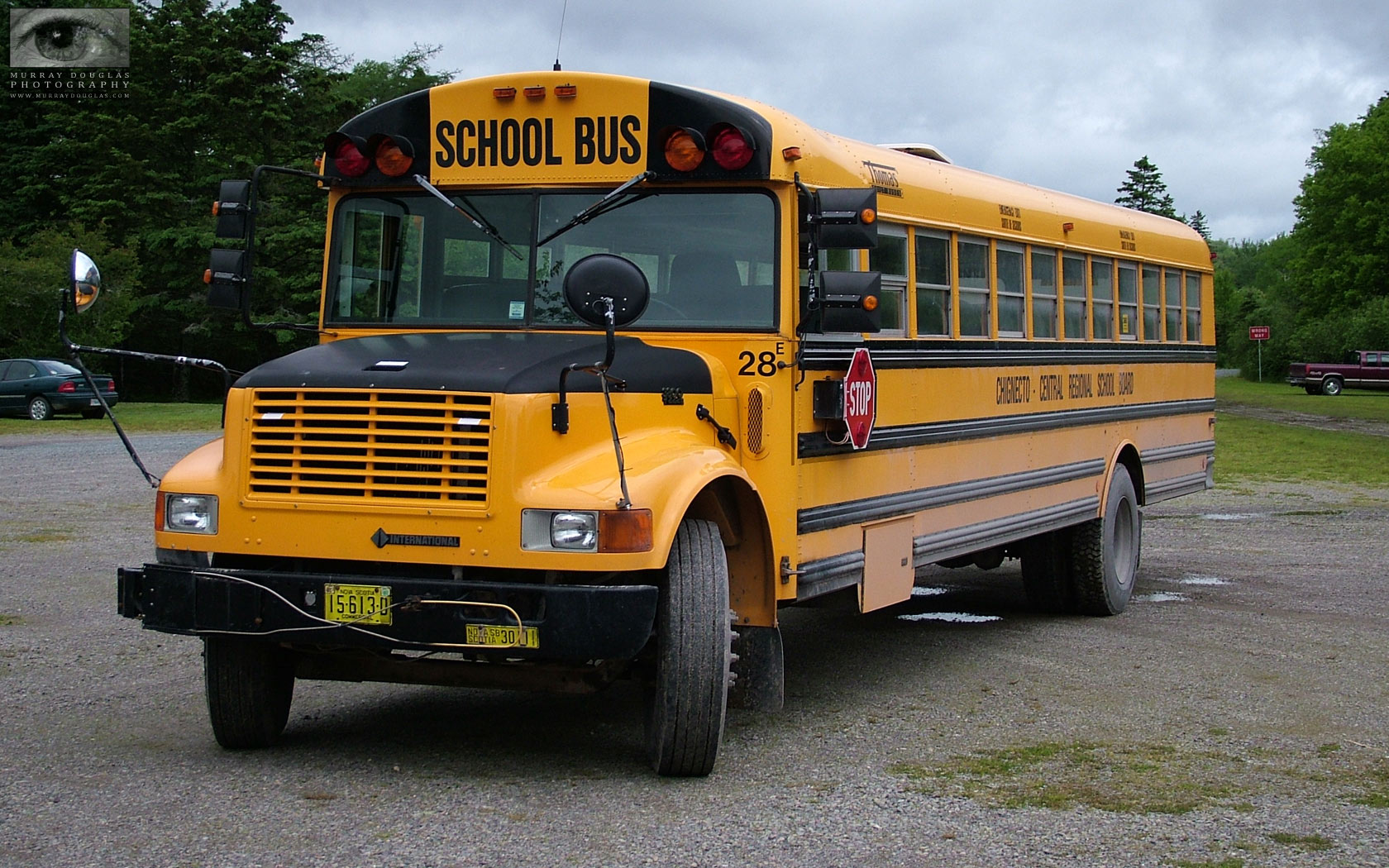 School Bus Wallpaper Images Pictures   Becuo 1680x1050