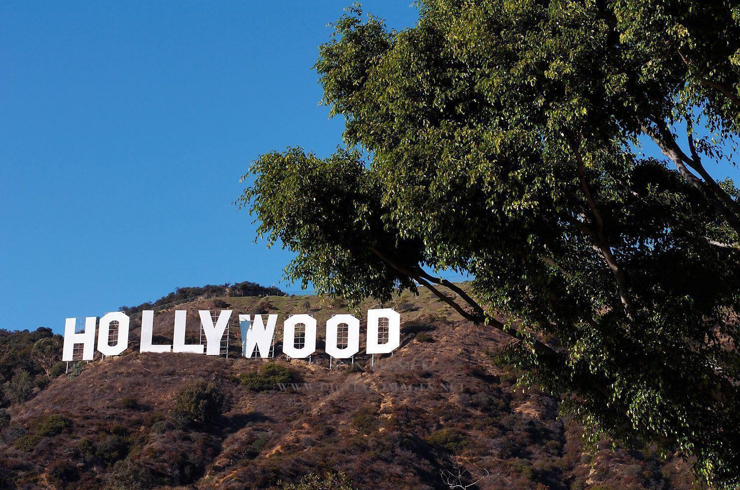 Hollywood Sign Wallpapers 1500x994