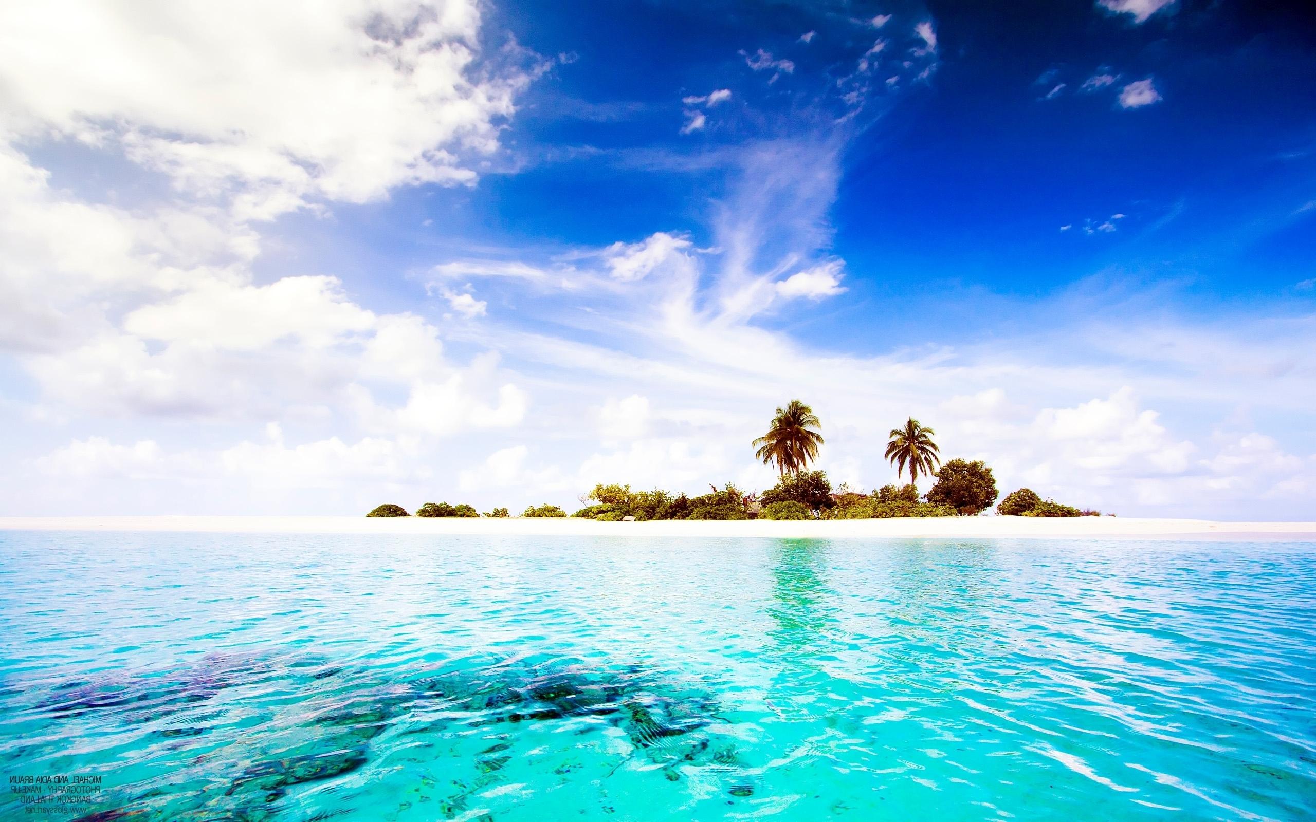 Sunset Tropical Island Wallpaper 2560x1600
