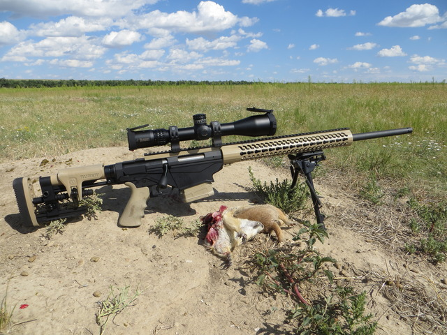 Ruger precision rifle   Page 11   Long Range Hunting Online Magazine 640x480