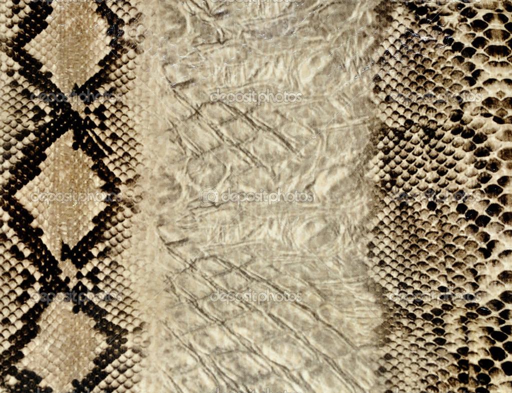 Black Snake Skin Wallpaper 1023x786