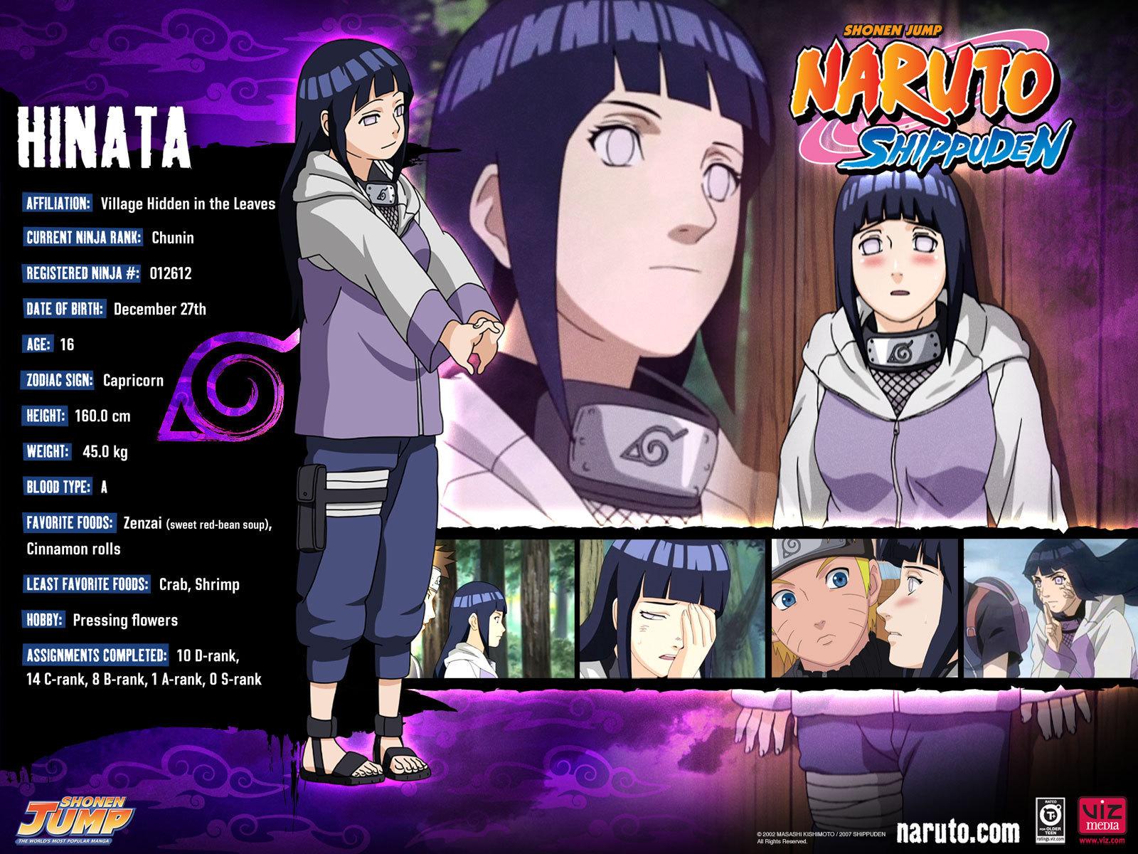 Description Hinata Naruto Shippuden Wallpaper Naruto Wallpaper is a 1600x1200