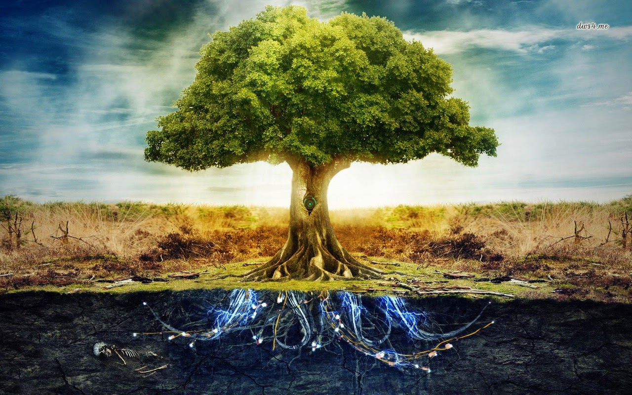 The Tree of Life 1280x800