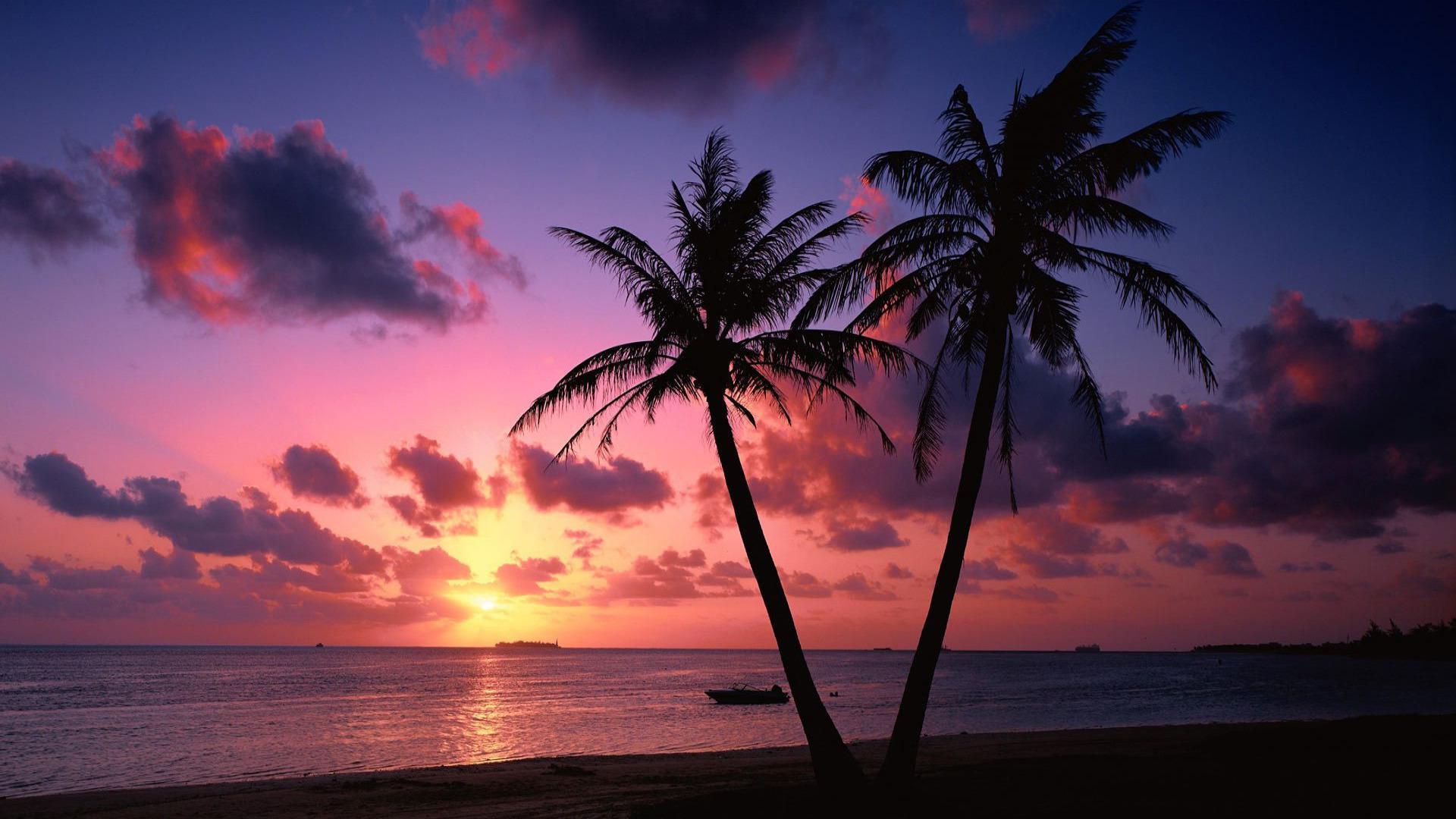 Tropical sunset Widescreen Wallpaper   2968 1920x1080