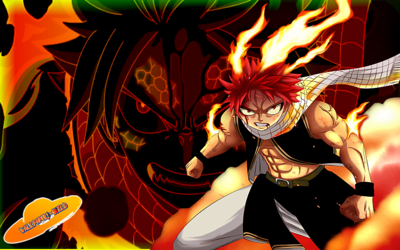 Free Download Fairy Tail Wallpaper Fullscreen Is High