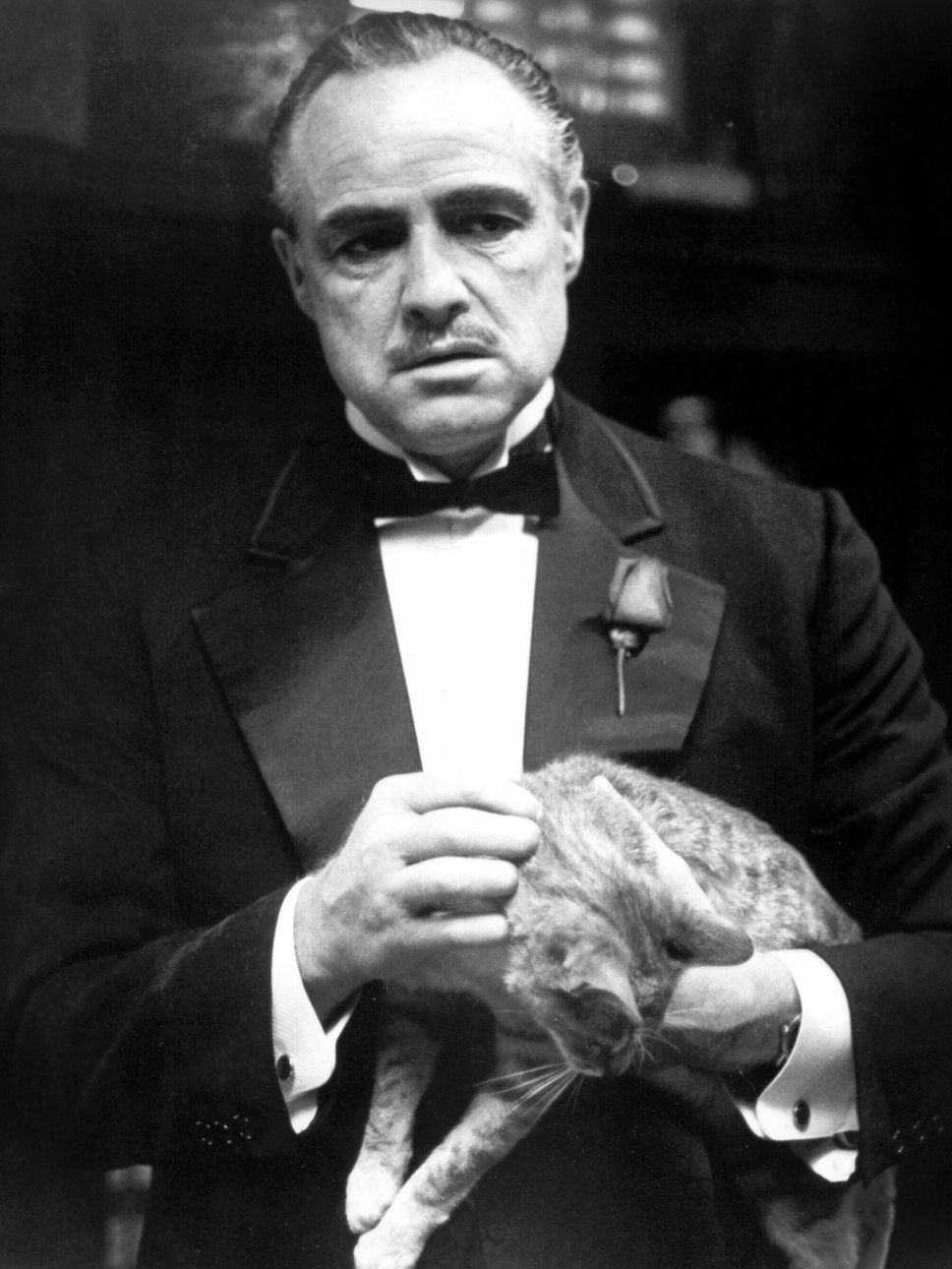 Vito Corleone Wallpapers 968x1290