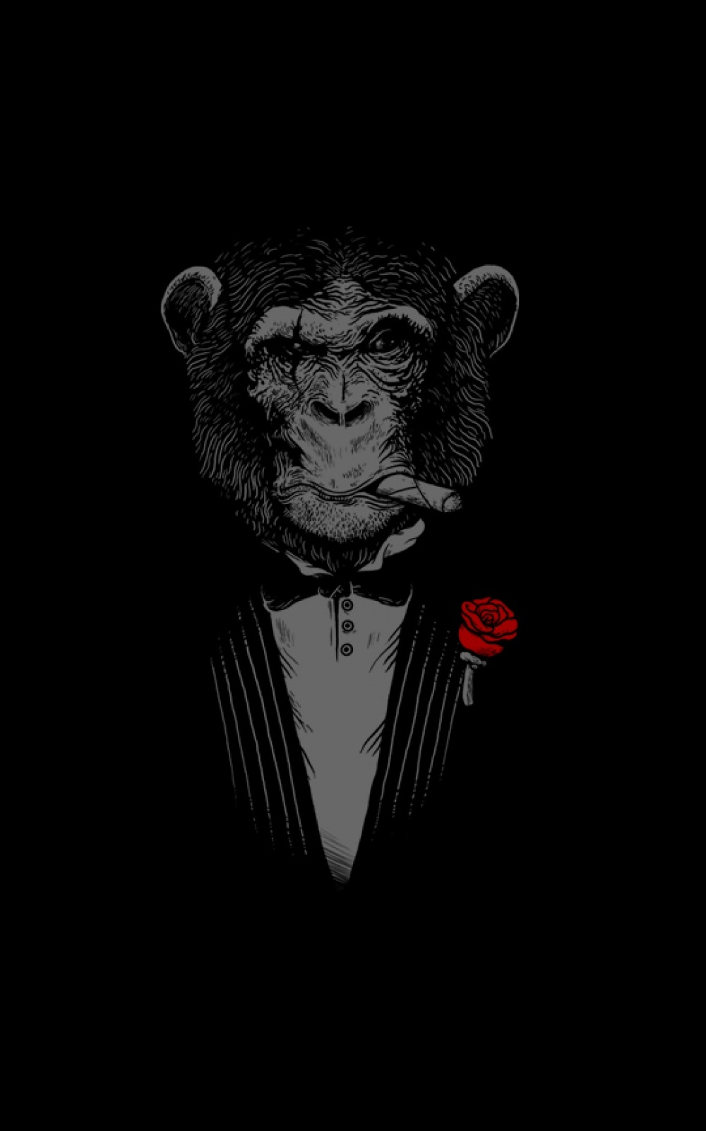 Chimpanzee Cigars Red Rose iPhone 6 Plus HD Wallpaper iPod Wallpaper 1000x1600