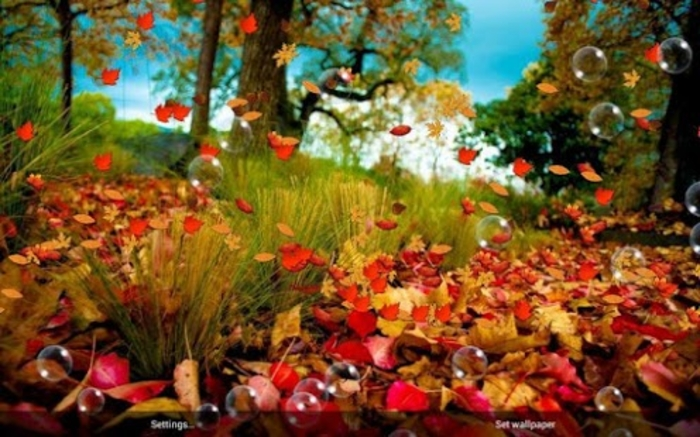 Autumn Live Wallpaper Android   Download 700x437