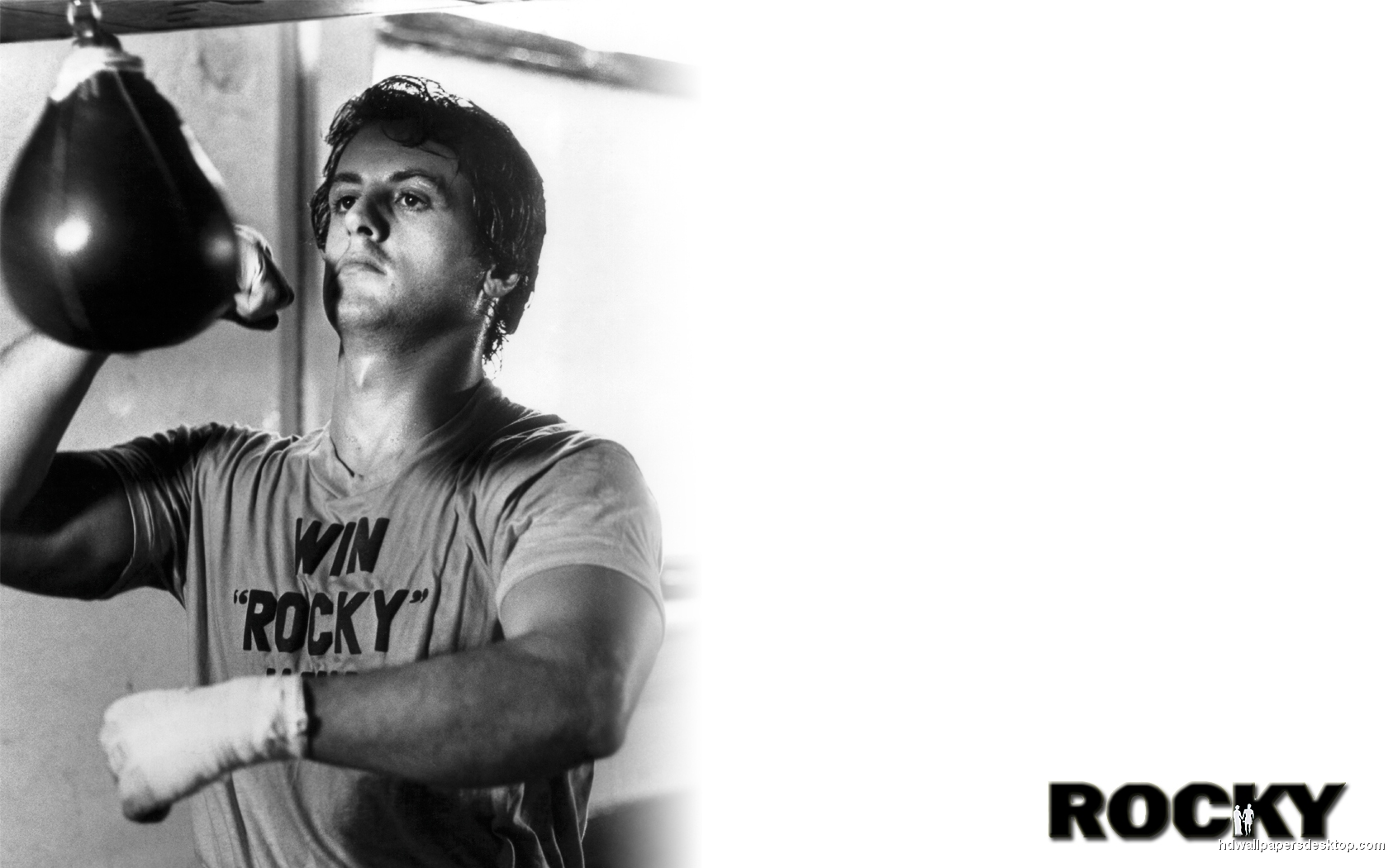 Rocky Wallpaper HD Movie Desktop Wallpaper 1680x1050 1680x1050