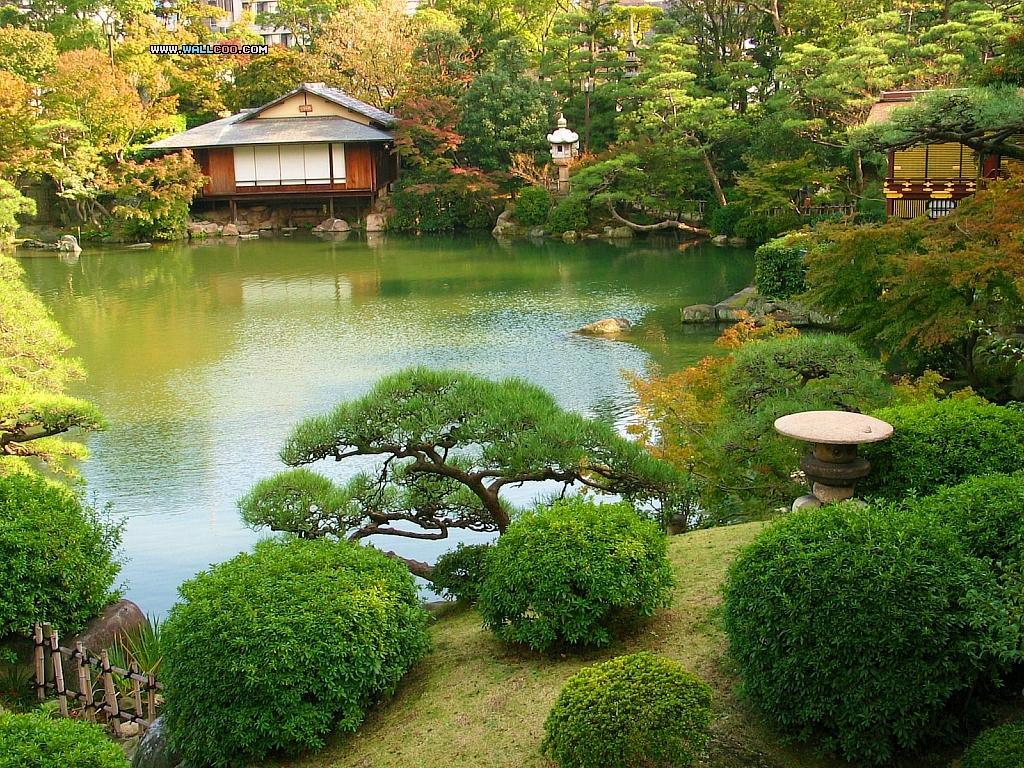 Japanese Garden Wallpaper Free Wallpapersafari