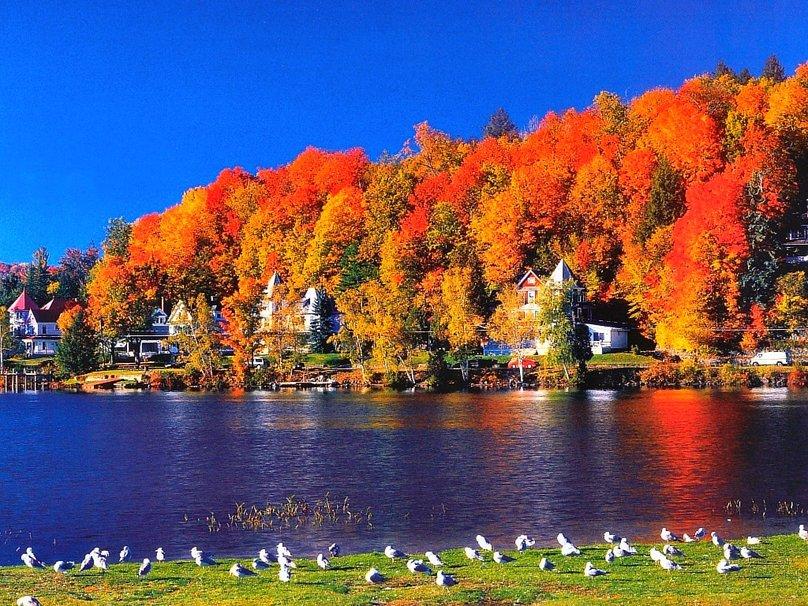 Lake Placid Wallpaper   ForWallpapercom 808x606