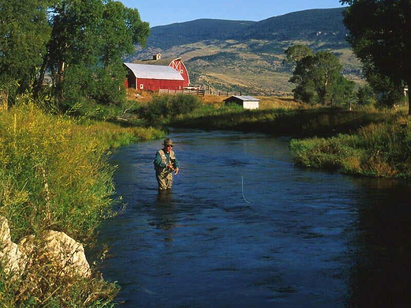 Armstrong Spring Creek Montana   nature wallpaper featuring fishing 800x600