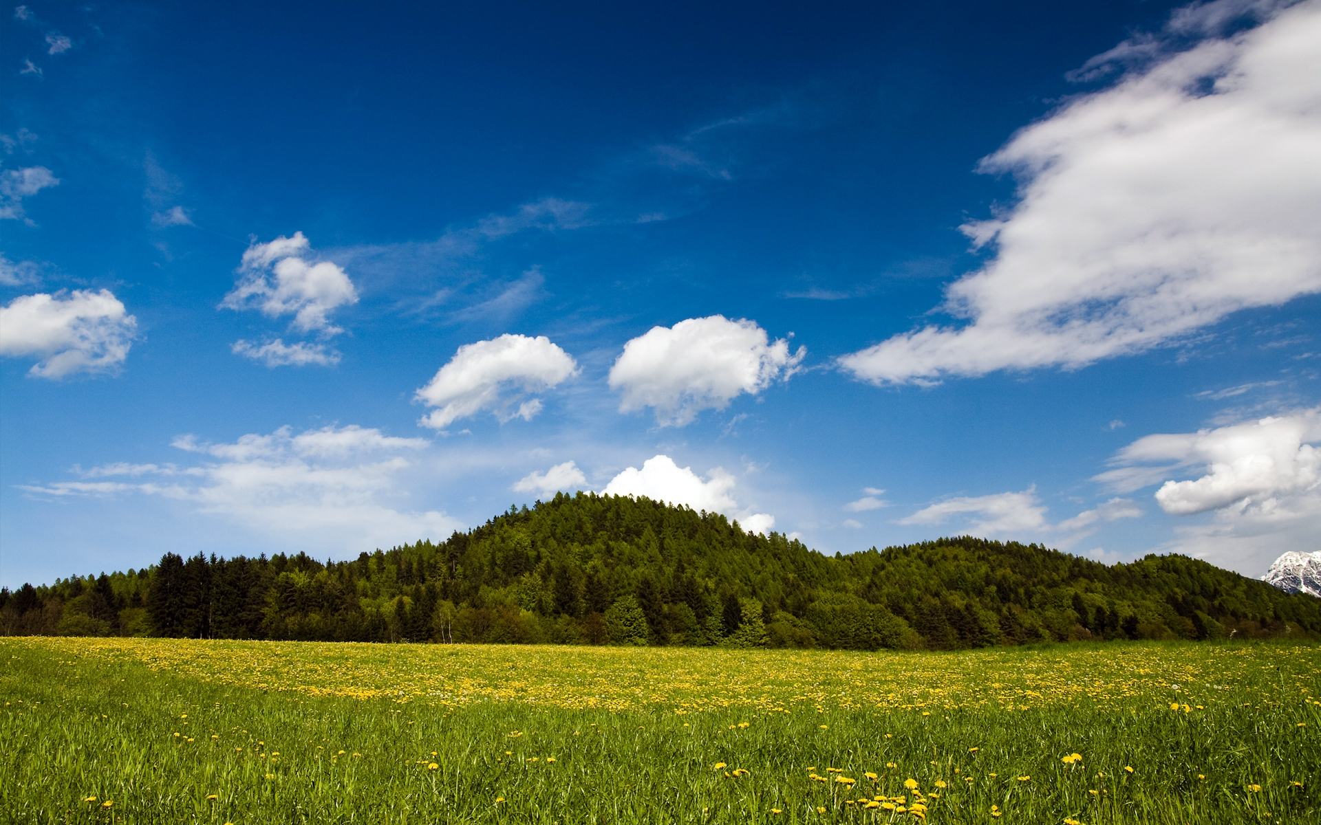Sunny Day Wallpapers, Natural Sunny Day Wallpapers, #18179