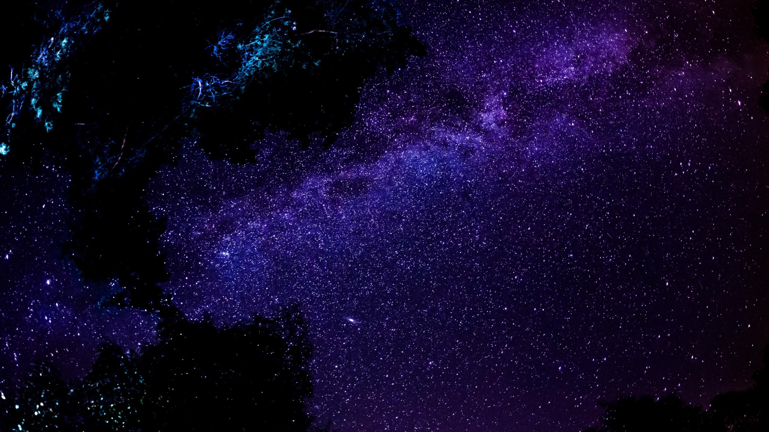 Night Sky Stars Wallpapers Hd 2560x1440