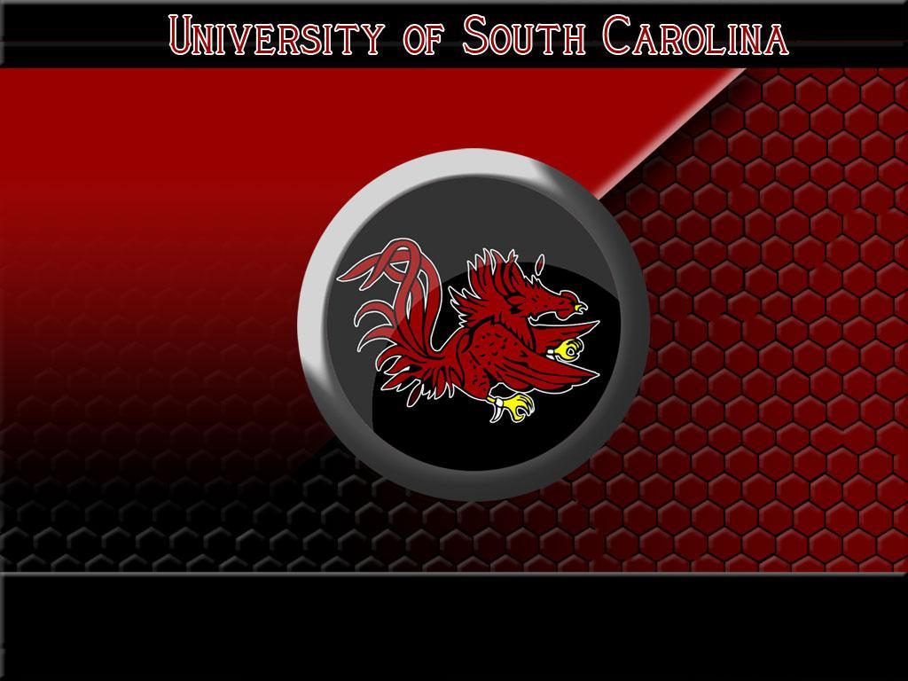 South Carolina Gamecocks Football Wallpapers - WallpaperSafari