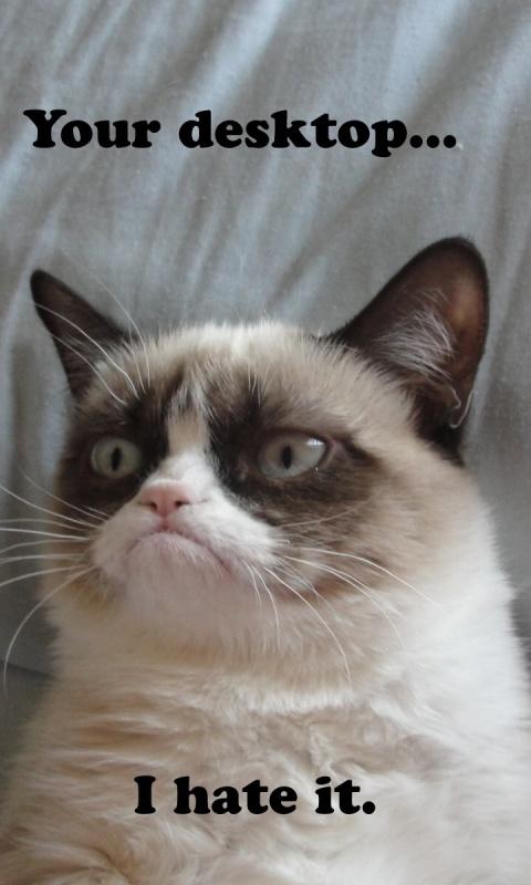Grumpy Cat Wallpaper For Computer Wallpapersafari
