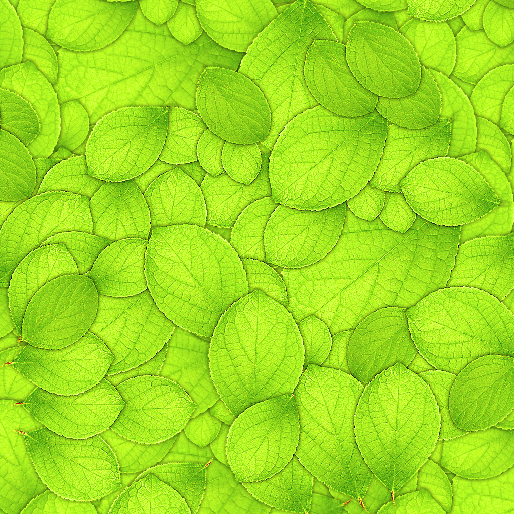 Green Leaves Wallpaper...