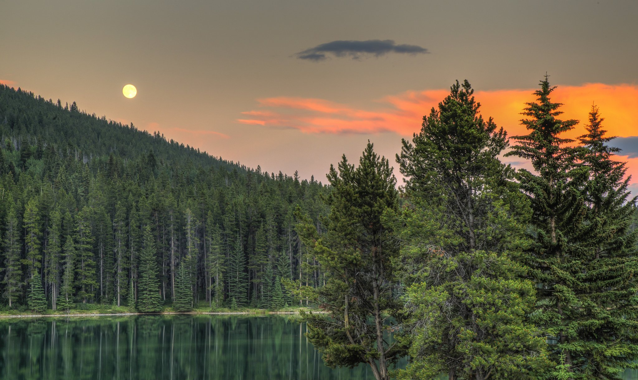 Alberta Canada lake forest sunset trees wallpaper background 2048x1221