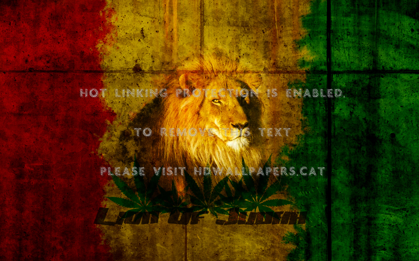 Lion Of Judah Rasta Wallpaper 1440x900