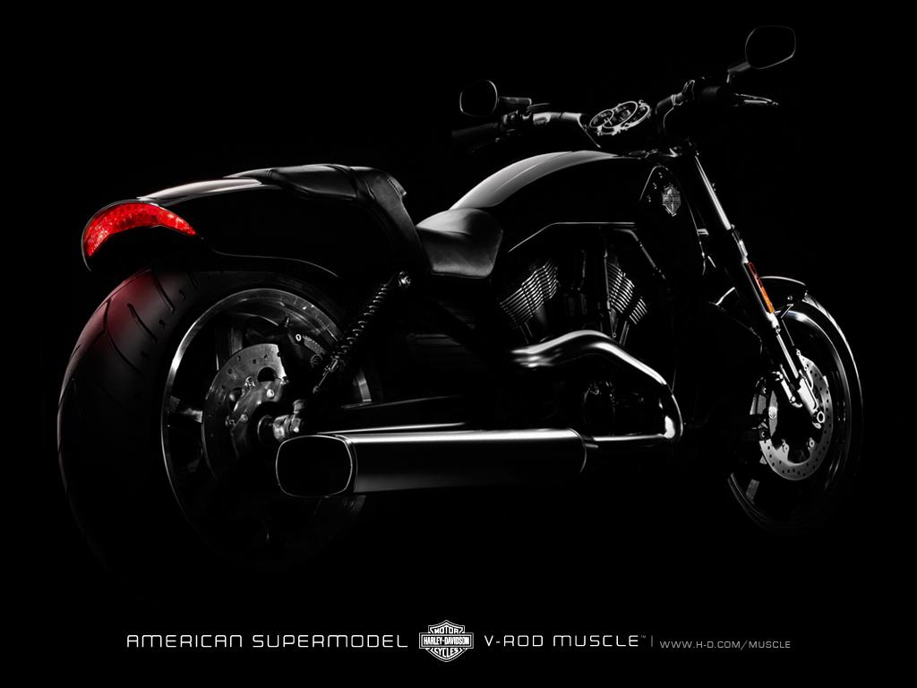 Harley Davidson V Rod Muscle wallpaper 95163 1024x768