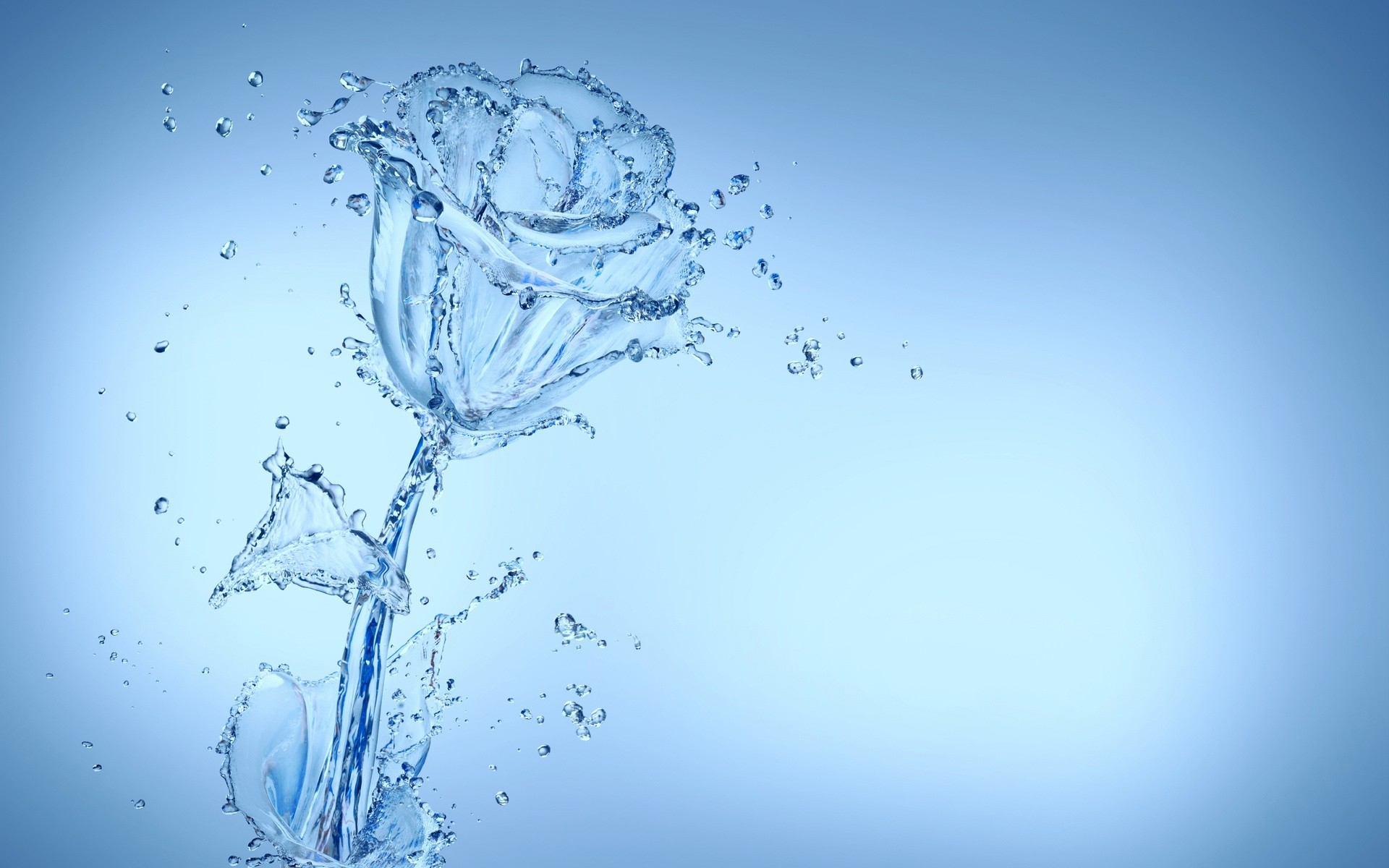 Cool Water Flower Wallpaper 37544 1920x1200 px 1920x1200