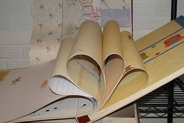 The sample books that wallpaper retailers use are frequently thrown 750x500