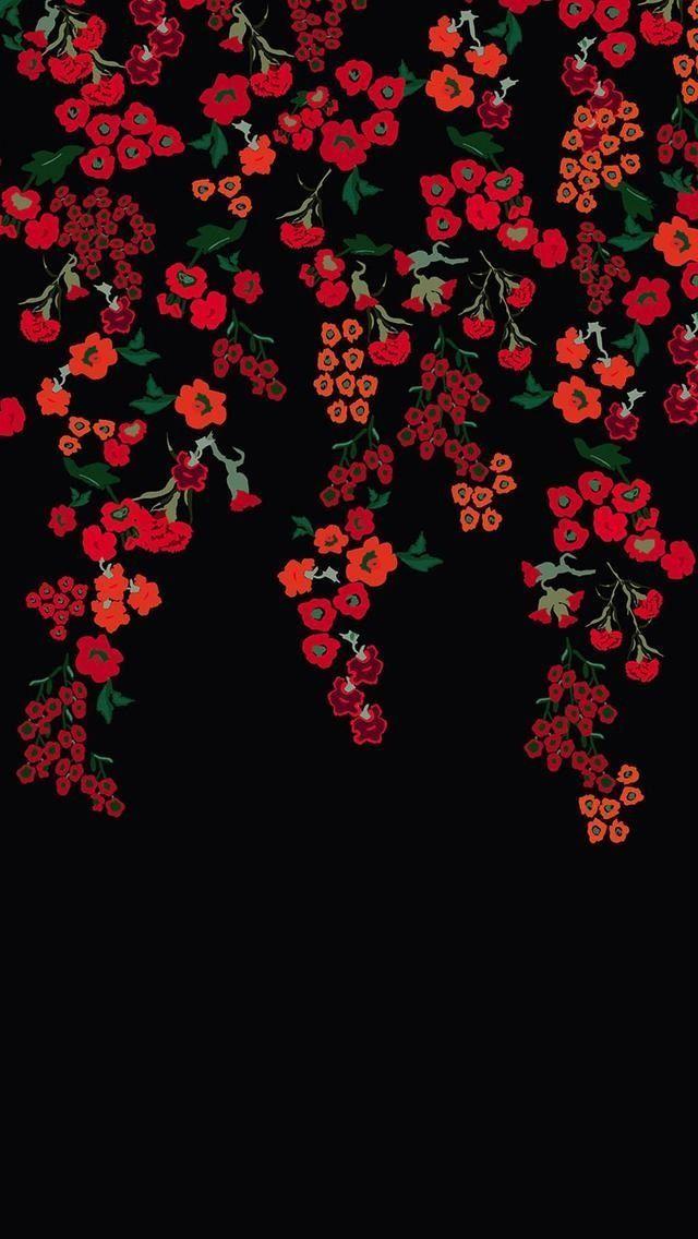 Download Flower Wallpapers HD Unsplash Trending Hd Floral Alive 5 640x1136