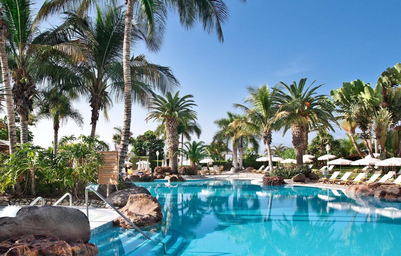 Wallpaper palm trees pool resort Palma de Mallorca Baleares 1332x850