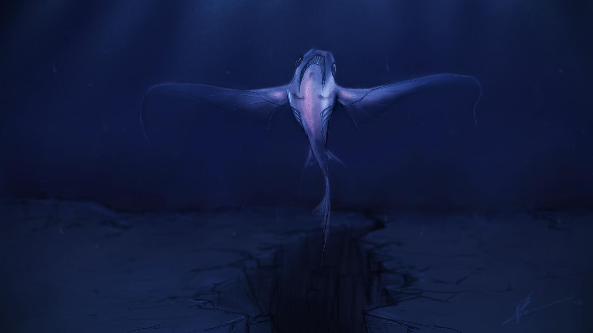 deep blue sea   wallpaper deep blue sea   wallpapers deep blue sea 1920x1080
