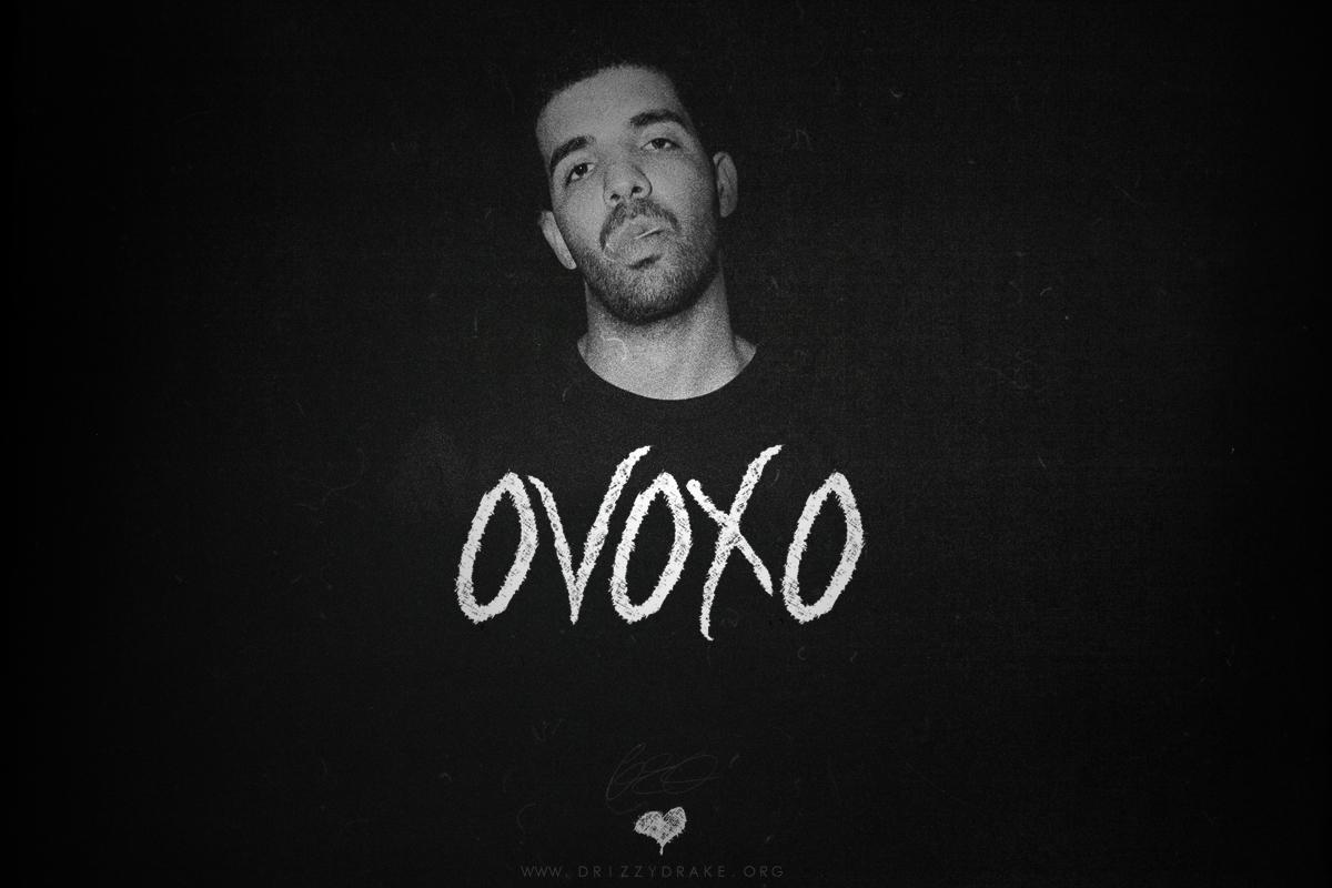 Drake Owl Logo Wallpaper