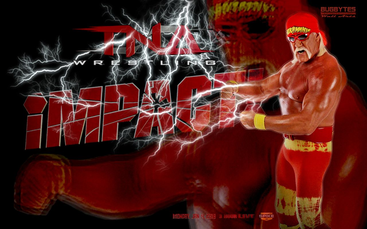 Hulk Hogan WWE Fast Lane WWE Superstars and WWE Wallpapers 1280x800