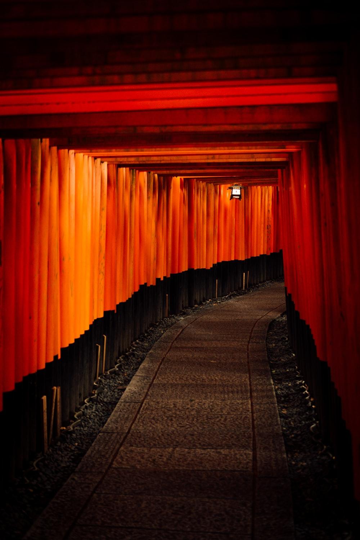 Corridor japan fushimi inari taisha and kyoto HD photo by Tim 1000x1500