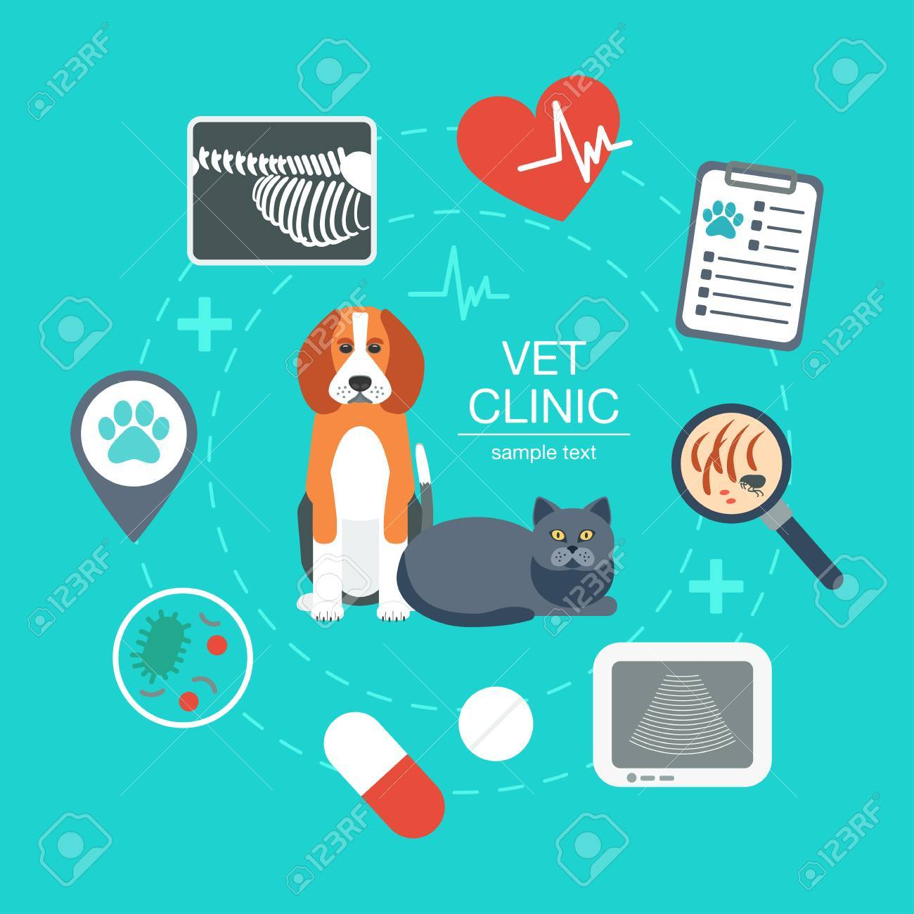 Banner Background Poster Concept With Veterinary Icons Vet 1300x1300