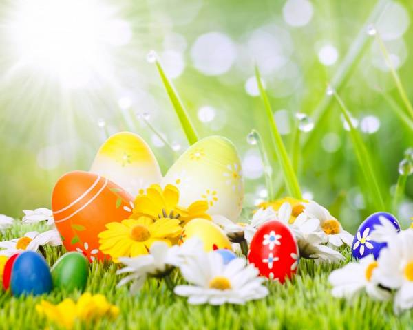 30 Cute and Funny Easter Wallpapers Ginva 600x480