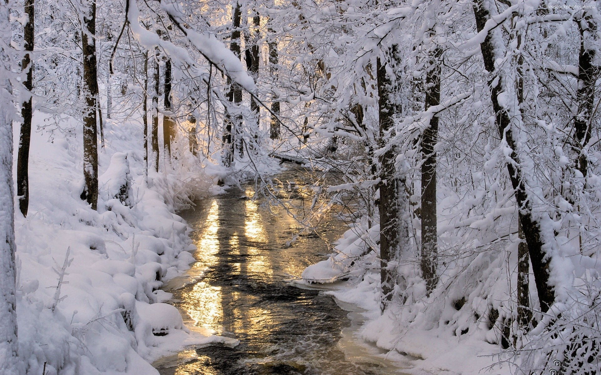 Download Stock Photos of creek and snowy trees nature 1920x1200