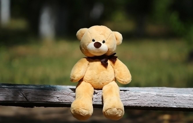 Wallpaper background toy shop bear images for desktop section 1332x850